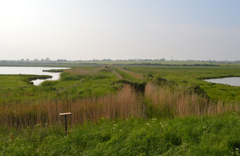 Holland Haven (View